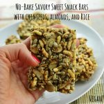no bake savory sweet bars vegan